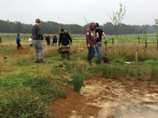 Planting pond with Halow - IMG_4633.jpg