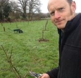 pruning-orchard-2-img_5471