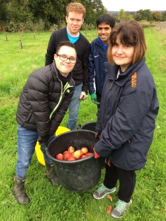 The Halow Project - Picking apples in the orchard
