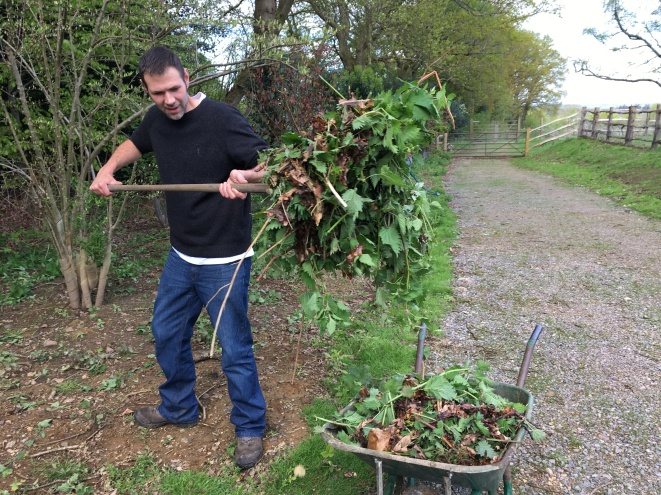 Marcus collecting nettles for the compost heap