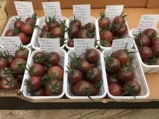 'Black Cherry' tomatoes sold at Hambledon Village Shop