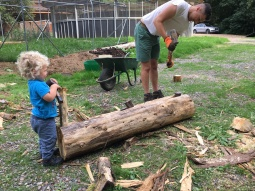 Big Ben and Mini Ben split logs for raised beds