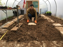 Laying the path in the polytunnel