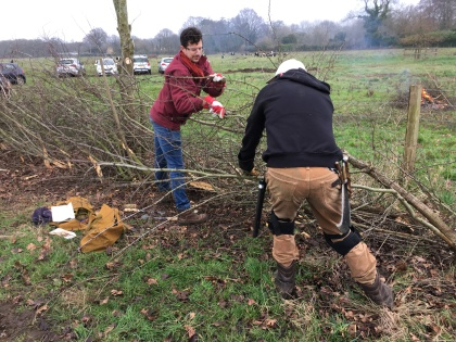 Trip out for a days Hedge laying with Surrey Wildlife Trust and The Surrey Hedgelaying Group